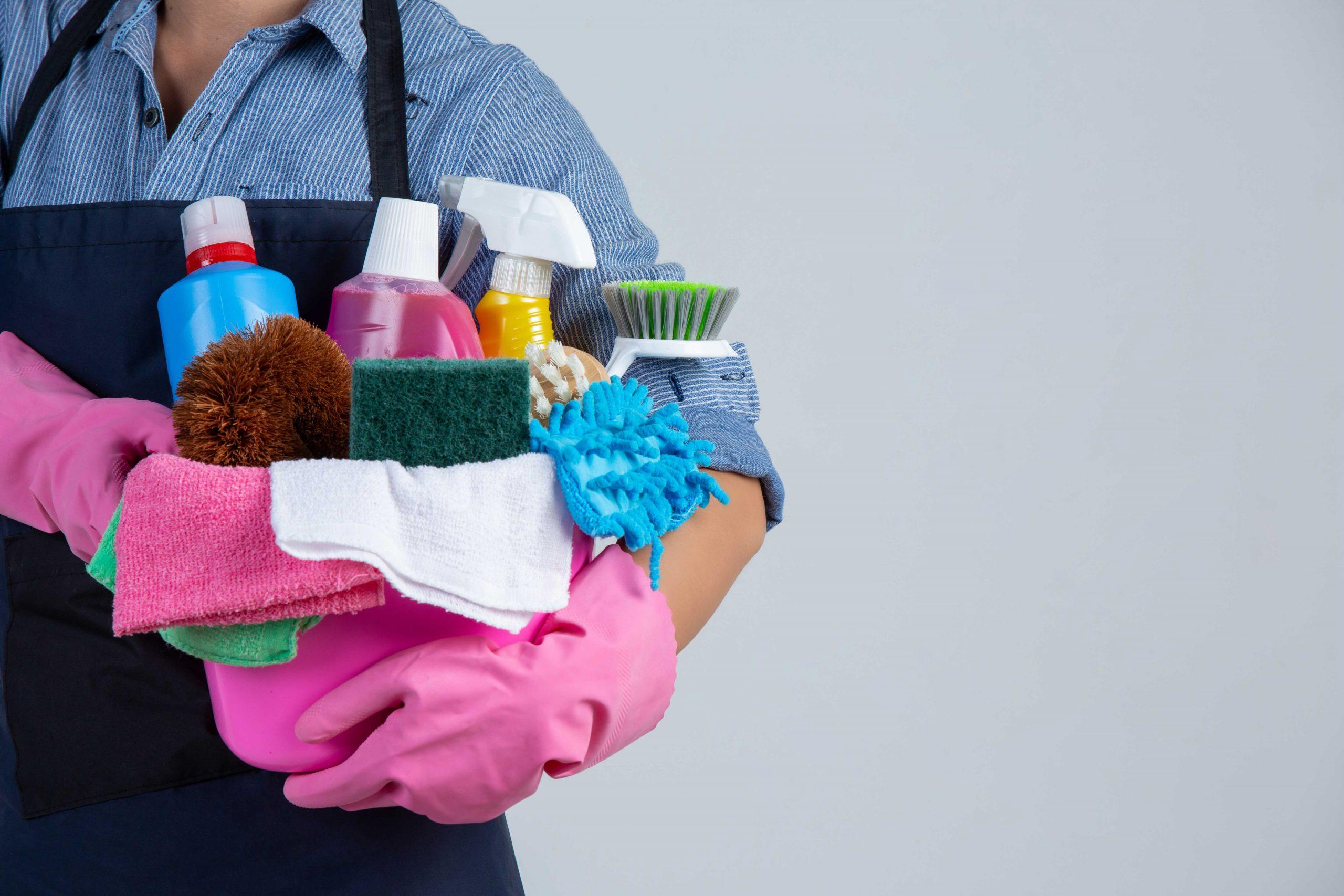 Serviços domésticos: Uma necessidade de profissionalização